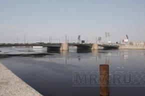 Этой ночью в Петербурге разведут четыре городских моста