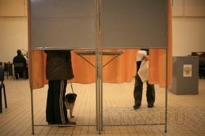 В Петербурге учителей и чиновников хотят выгнать из избирательных комиссий