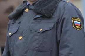 В Москве двое «зайцев» избили полицейского, задержавшего их
