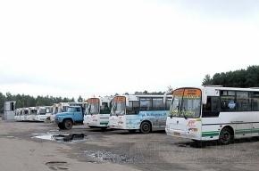 В Петербурге в маршрутках с 16 апреля вырастет стоимость проезда