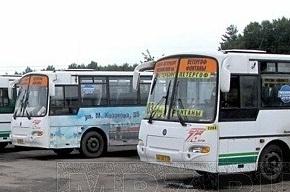 Коммерческие ночные автобусы до аэропорта