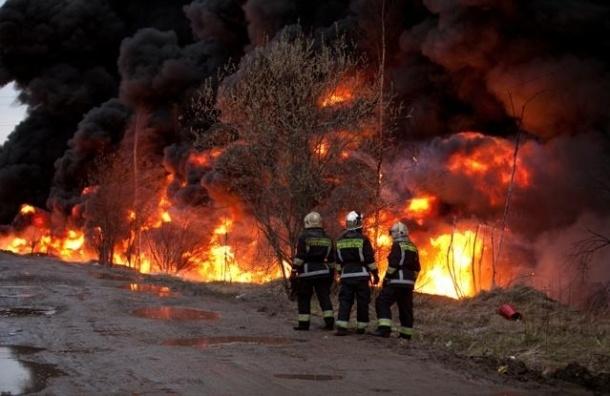 На севере Петербурга горел мазут: черные клубы дыма перепугали весь район