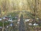 Южно-Приморский парк: Фоторепортаж
