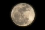 Луна и полнолуние: Фоторепортаж