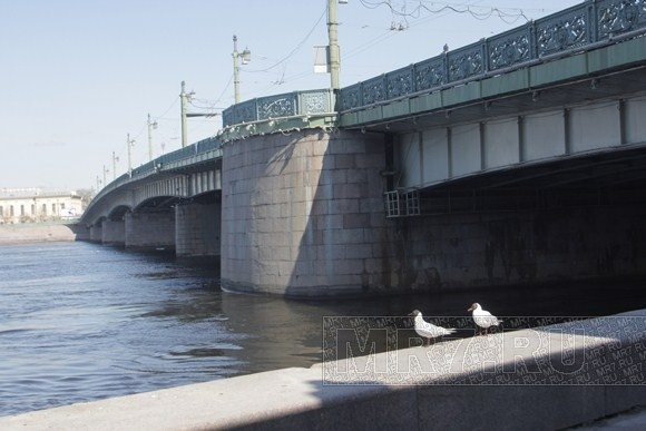 Литейный мост: Фото