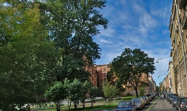 Подковыровский сад: Фото