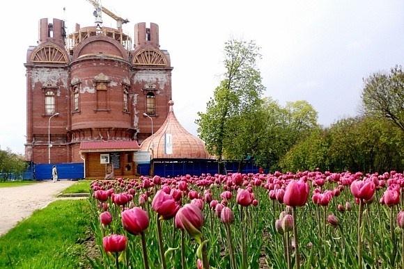 Царское Село: Фото