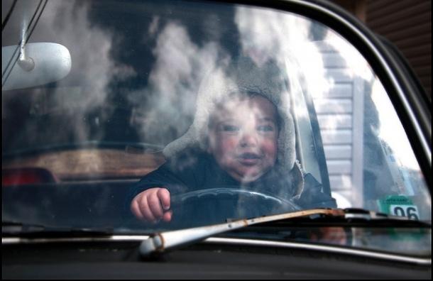 Какие машины чаще всего угоняют в Петербурге