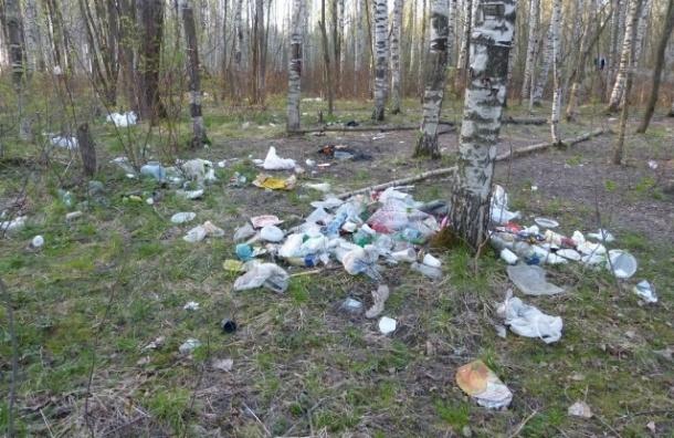В Петербурге горы мусора в Южно-Приморском парке видны со спутника