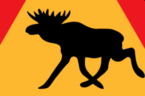 ГИБДД предупредила водителей о лосях на дорогах Ленобласти