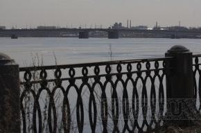 Любовная драма: с моста Александра Невского спрыгнули двое?
