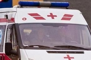 Труп мужчины около полугода лежал в канализации на Пискаревском