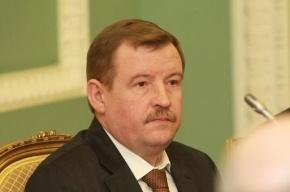 Глава петербургской полиции заработал 2,5 млн рублей, его жена – ни копейки