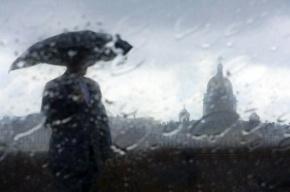 Июнь не порадует петербуржцев хорошей погодой