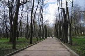 В Парке Бабушкина незаконно построили банкетный зал