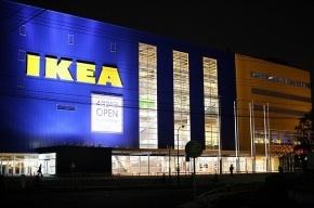 IKEA  призналась, что активно вырубает леса в Карелии