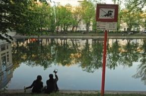 Ущерб от оппозиции на Чистых прудах оценили в миллион рублей