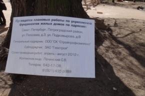 Сквер на Петроградке вырубят ради торгового центра