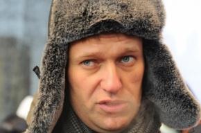 Навальный не воровал лес: уголовное дело прекращено