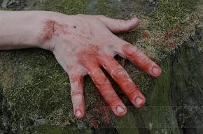 В Ленобласти гастарбайтера искромсало ножами пилорамы