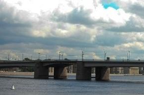 В Петербурге мужчина спрыгнул с моста и не выплыл