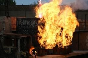 В Петербурге сантехник грозился, что станция «Девяткино» будет взорвана