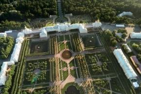 Снимки пригородов Петербурга появились на панорамах «Яндекса»
