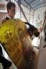 Фоторепортаж: «Икона на Невском (фото ИТАР-ТАСС)»