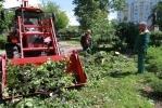 Фоторепортаж: «Последствия урагана в Петербурге, 18 июня 2012»
