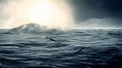 Фоторепортаж: «НЛО в Балтийском море (фото)»
