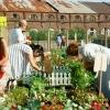 Фоторепортаж: «Новая Голландия откроется снова: программа на 16-17 июня»