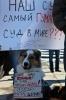 Фоторепортаж: «Ветеринар Александр Шпак»
