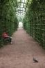 Фоторепортаж: «Летний сад - люди»