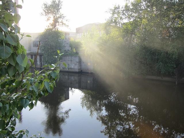 Река Охта: Фото