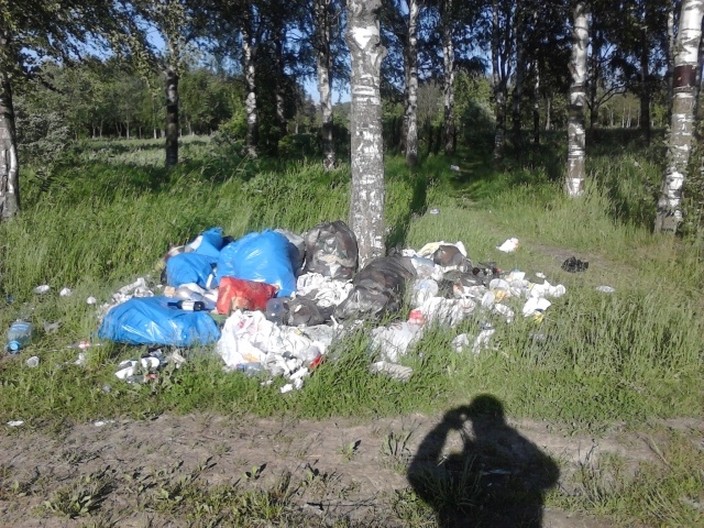 Мусор в Южно-Приморском парке (часть 2): Фото