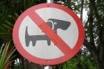 Охотники на собак отрицают существование догхантера, якобы похищенного зоозащитниками