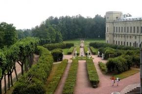 Губернатор Дрозденко намерен поделить Гатчинский парк между Петербургом и областью