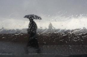 На Петербург надвигаются ливни с грозами