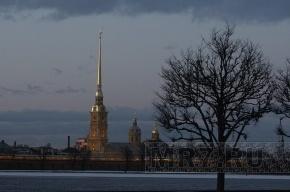 В Петербурге не стали возбуждать уголовное дело по факту убийства Великих князей
