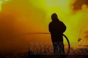 Квартира, сгоревшая на Кондратьевском, была алкопритоном