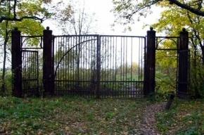Смольный не возражает против гольф-полей в Баболовском парке, но при сохранении свободного доступа