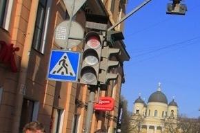Автопробег за культурное вождение пройдет в Петербурге