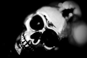 В Петербурге откопали череп, завернутый в полиэтиленовый пакет