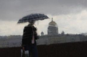 В Петербурге 6 июня будет тепло, но дождливо