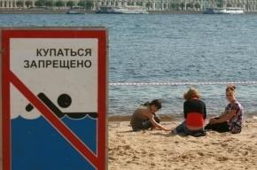 В Петербурге можно купаться только на одном пляже в Красном Селе