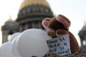 На Исаакиевской остался «гулять» лишь один оппозиционер