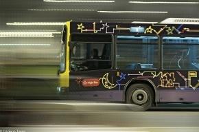 В Петербурге появятся «ночные» автобусы