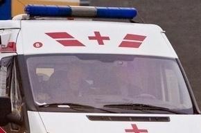 Девятка врезалась в автобус на Петроградке