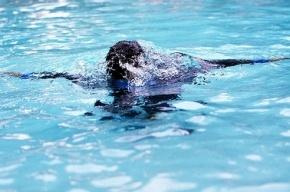 В Ленинградской области 8-летняя девочка утонула в пруду