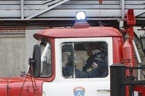 Кальян-кафе сгорело в Петербурге